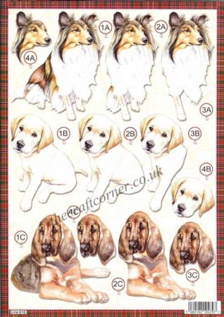 Collie Dog Die Cut 3d Decoupage Sheet From Craft UK Ltd